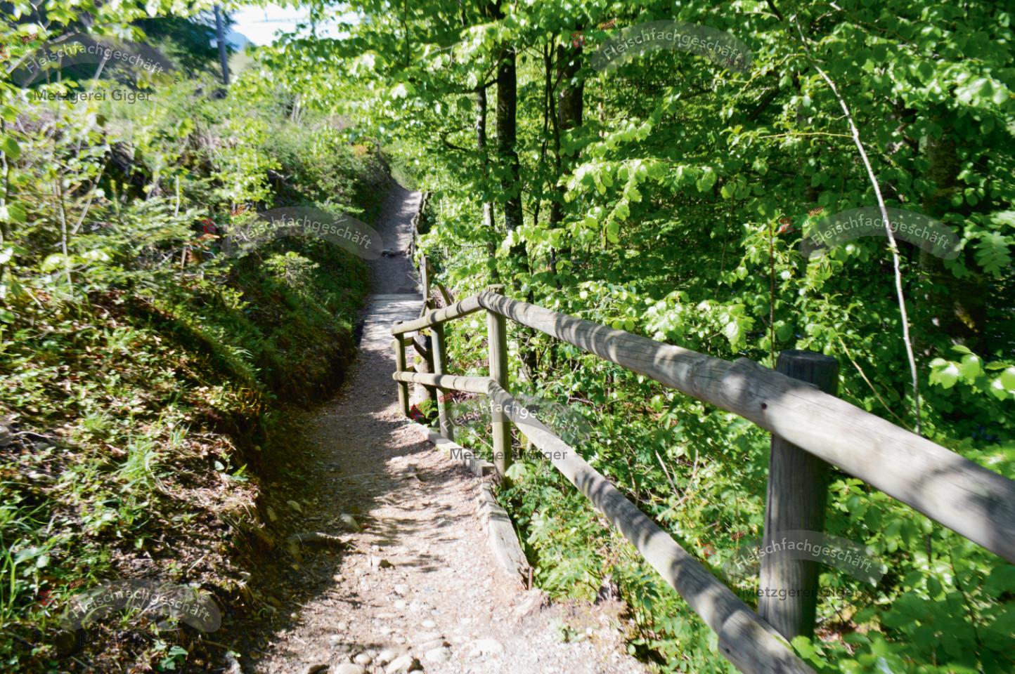 Emmenuferweg in Hasle